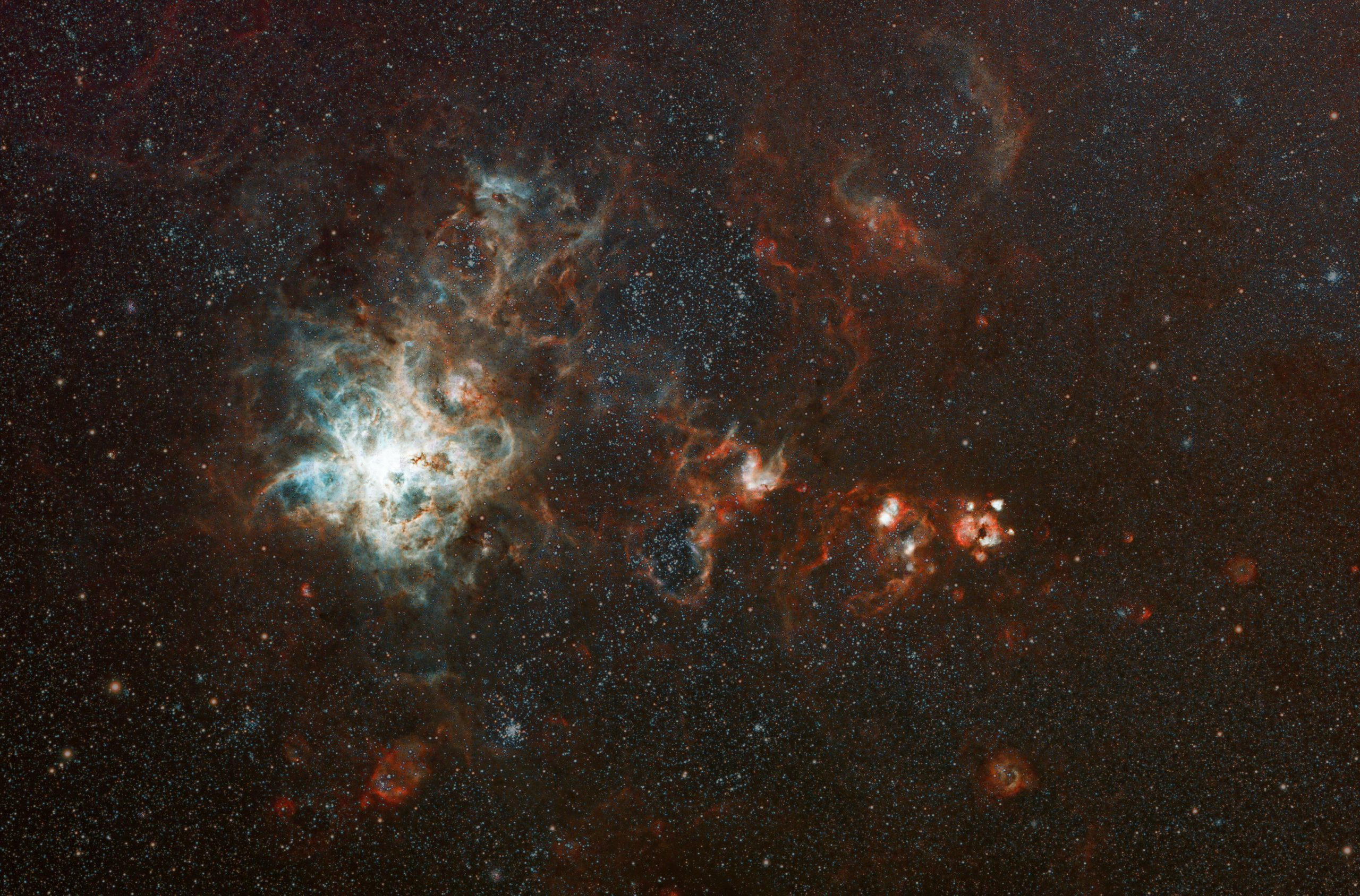 Tarantula-NGC270-Final-starsReduced